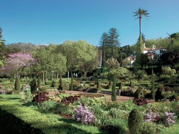 Gardens and Flora of Madeira
